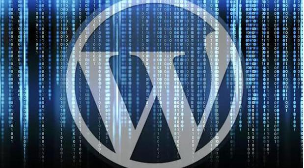 Hacker-proof WordPress Website