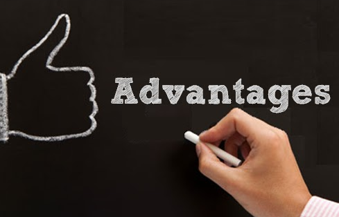 advantages of hiring web developer