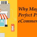 Why Magento is a Perfect Pick for eCommerce Business