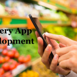 Hire Grocery App Developer To Deliver Convenient Grocery Shopping Experience