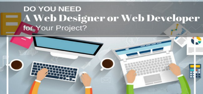 Type of web developer do you need to hire