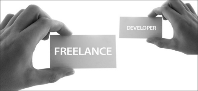 Hire a full-time web developer or a freelancer