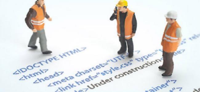 Hire web developer professional