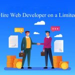Tips To Find A Web Developer For Your Startup With Limited Budget
