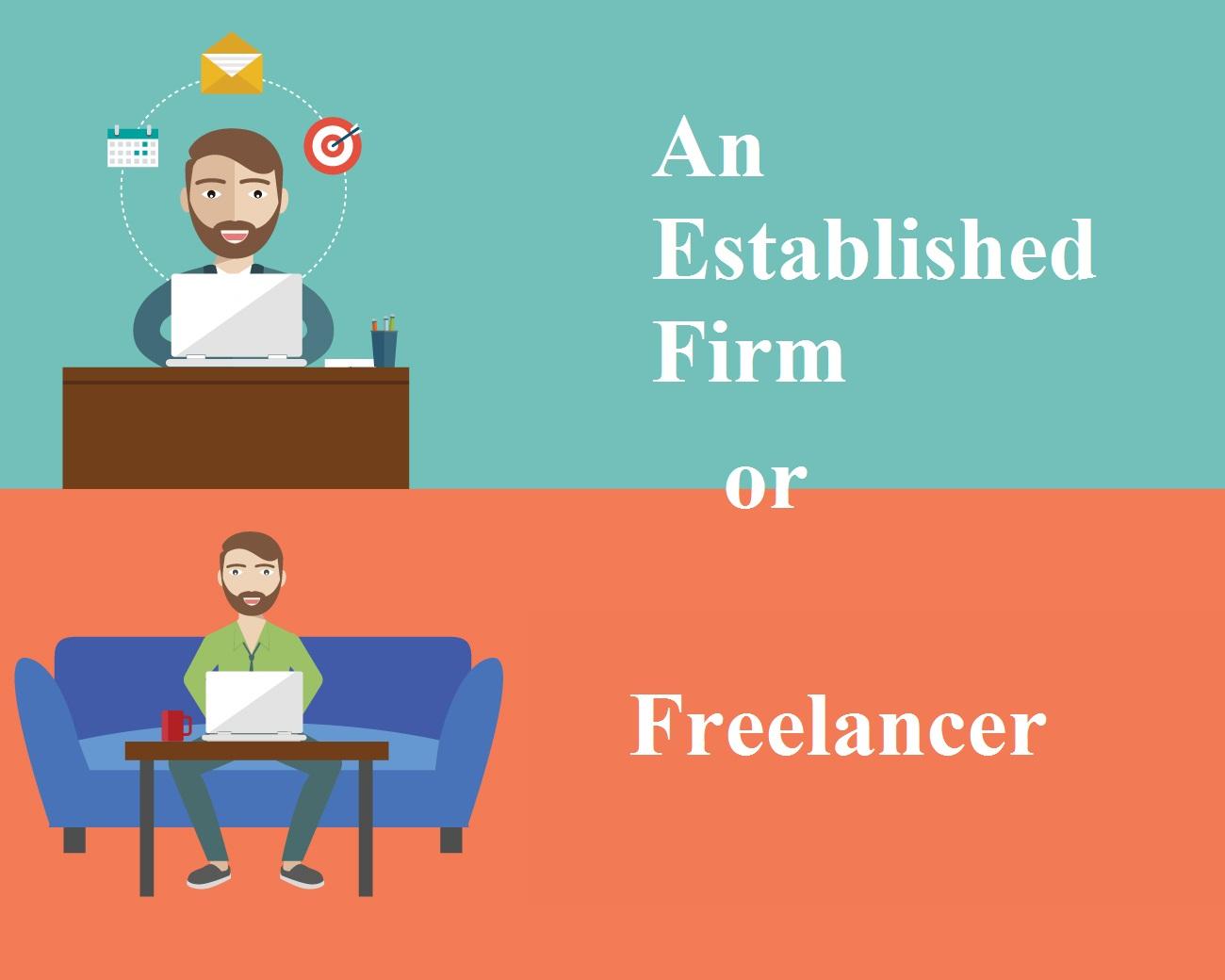 Freelancer or an established firm